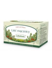 Lek ziołowy na drogi moczowe - Liść mącznicy.